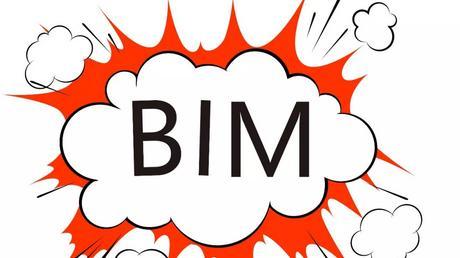 BIM战略规划师挂靠一年多少钱?